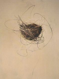 Horse Hair Nest Edition of 25 ©Thomas Brummett / All Rights Reserved Bird Nest Hair, Nester, Horse Hair, Gravure, Bird Art, Bird Feathers, Les Oeuvres, Illustration, Art Drawings