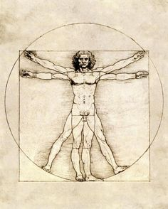 Proportions Of The Human Figure (Vitruvian Man) by Da Vinci, Leonardo - Wall Art Giclee Print or Canvas