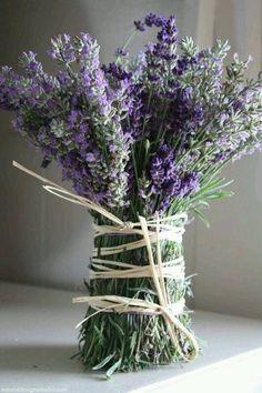 Gypsy Purple home...... : Photo