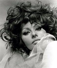 Sophia Loren`