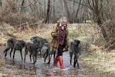 Hickory (R), who made history as the first-ever Scottish Deerhound to win ''Best in Show'' at the Westminster Dog Show, walks in front of her breeder Cecilia Dove with her pack at Dove's 56-acre farm in Flint Hill, Virginia, March 11, 2011. REUTERS/Hyungwon Kang