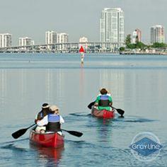 60 min single Kayak rental www.graylinemiami.com
