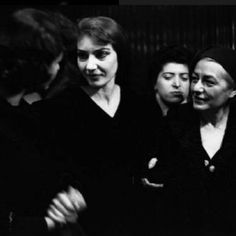 Maria Callas, Yorkie, Che Guevara, Yorkies, Yorkshire Terrier, Yorkshire Terriers