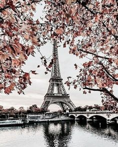 The Eiffel Tower Places To Travel, Places To See, Travel Destinations, Tour Eiffel, Paris France, Beautiful World, Beautiful Places, France Eiffel Tower, Eiffel Towers