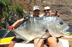 drowning-worms: A truly giant trevally! drowning-worms: A truly giant trevally! Sport Fishing, Gone Fishing, Fishing T Shirts, Fishing Tips, Fishing Boats, Fishing Lures, Cool Fish, Big Fish, Ocean Food
