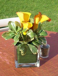Small Calla Lily Centerpiece - so simple