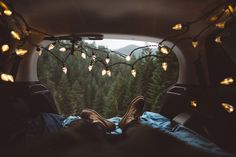 Lazy forest with you