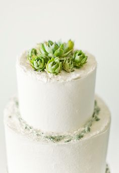 Succulents on top of wedding cake