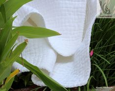 Cotton Quilts, Cotton Fabric, Handmade Baby Quilts, Toddler Blanket, Kantha Stitch, Kantha Quilt, Crib Bedding, Hand Stitching, Gender