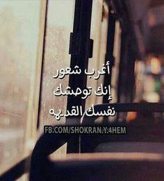 دائماً...kh