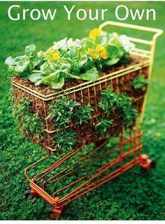 Cute grocery cart planter