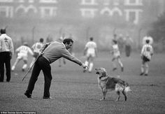 Nottingham Forest manager, Brian Clough with his dog Del-Boy, during training in Nottingham on October (Photo by Bob Thomas/Getty Images. Football Odds, Dog Football, Brian Clough, Roy Keane, Eric Cantona, Derby County, Nottingham Forest, Leeds United, Boys