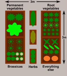 Garden layout plans. Not all veggies should bed together.