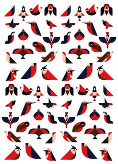 Argijale - Illo Zoo - the illustration agency — Designspiration Mais Bird Illustration, Creative Illustration, Graphic Design Illustration, Pattern Illustration, Zoo Signage, Motif Tropical, Bird Graphic, Bird Logos, Gig Poster