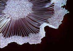 Karen Lawrence, glass artist. Desert Forms