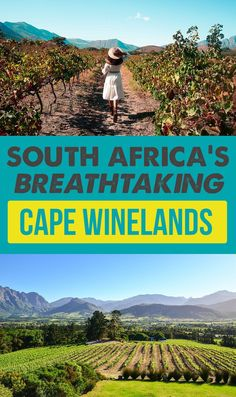 Africa Travel Features - If you're a wine lover, South Africa's Cape Winelands should be on your bucket list. Here's what we did in the wine regions of Stellenbosch and Franschhoek . Travel Couple, Family Travel, Family Vacations, Travel Around The World, Around The Worlds, Places To Travel, Travel Destinations, Wine Safari, Roadtrip