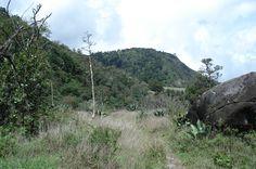 Volcán Barú | Provincia de Chiriquí, Panamá