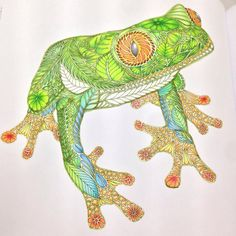 Frog Millie Marotta's Tropical Wonderland Done with Muji colorpencils and Faber Castell Watercolour Pencils