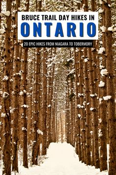 Discover where to hike the Bruce Trail in Ontario with the TOP 20 Bruce Trail day hikes covering each section of the trail. Explore Ontario through its best trail. I where to hike in Ontario I hiking in Ontario I Ontario hikes I Ontario trails I trails in Ontario I Ontario Canada I Ontario travel I get outdoors I places to hike in Ontario I things to do in Ontario I what to do in Ontario I places in Ontario I day hikes on Bruce Trail I #Ontario #hiking #BruceTrail Usa Travel Guide, Travel Usa, Travel Tips, Travel Destinations, Travel Abroad, America And Canada, North America, Ontario Travel, Canadian Travel