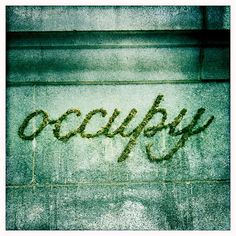 "Moss ""Graffiti"":  Occupy wall art."