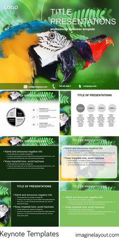 Cockatoo Parrot Keynote templates
