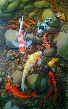 Their spectacular colors and patterns are part of the reason that koi fish are loved today and treasured by their owners. Colors of a koi fish should be bright. Art Koi, Fish Art, Koi Fish Pond, Fish Ponds, Koi Kunst, Koi Painting, Family Painting, Painting Canvas, Japanese Koi
