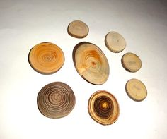Wood jewelry findings components. Jewelry supply by NayasArt