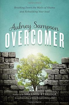 Overcomer: Breaking Down the Walls of Shame and Rebuilding Your Soul, http://www.amazon.com/dp/0310342589/ref=cm_sw_r_pi_awdm_x_ocmgybR9YG0ZJ