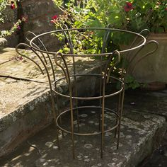 Made from coated steel rods, these supports are perfect for larger plants