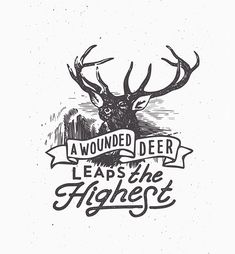 A wounded deer leaps highest, I've heard the hunter tell .. emily dickinson
