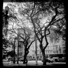 #tramas_urbanas #saopaulo #arquitetura #archilovers #archidaily #architecture
