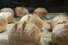 Instructions and recipes, including tips on growing and maintaining a starter leavener and converting it into dough. Sourdough Rolls, Sourdough Bread Starter, Sourdough Recipes, Bread Recipes, Pizza, Bread And Pastries, Low Carb Bread, Turkish Recipes, Food Facts