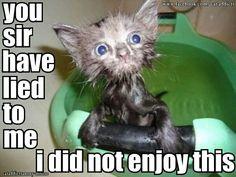 Poor baby... LOL