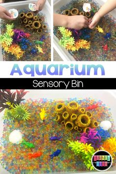 Pet Activities for Preschool Aquarium Sensory. Pet Activities for Preschool Aquarium Sensory Bin with water beads, fish tank plants, and fish counters! Perfect sensory activity for a pet preschool theme! Fish Activities, Literacy Activities, Preschool Activities, Preschool Learning, Preschool Printables, Preschool Lessons, Preschool Crafts, Water Theme Preschool, Used Legos