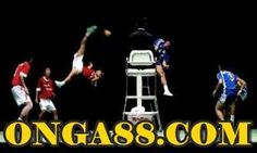 PGA♣️♣️♣️ONGA88.COM♣️♣️♣️PGA: 무료체험머니♠️♠️♠️ONGA88.COM♠️♠️♠️무료머니 Wrestling, Sports, Lucha Libre, Hs Sports, Sport