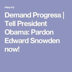 Demand Progress | Tell President Obama: Pardon Edward Snowden now!