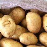 patates sto saki, sintagi gia mpifteki laxanikwn Vegetables, Health, Food, Cyprus News, Health Care, Essen, Vegetable Recipes, Meals, Yemek
