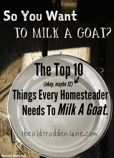 So You Want To Milk A Goat? Things Every Homesteader Needs To Milk A Goat. #Dairy-Goats, #Hobby-Farm, #Milking-Supplies #Animals-and-Livestock