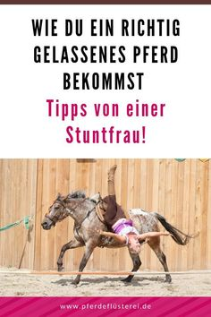 How to get a really relaxed horse! Tips from a stunt woman from her training with show horses - Practical tips from a stunt woman and show horse rider for a really relaxed riding horse - Natural Horsemanship, Stunt Woman, Food Dog, Rider Boots, Types Of Horses, Riding Lessons, Horse Tips, Pet Care Tips, Equestrian Outfits