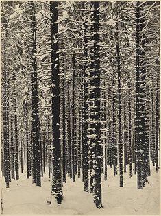 """Albert Renger-Patzsch """"Mountain Forest in Winter"""" 1926"""