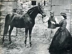 Voltigeur, the winner of the Epsom Derby and St Leger Stakes in 1850. This is the oldest known photo of a racehorse