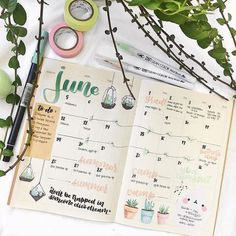 """83 Likes, 2 Comments - erin ✨ (@eristudy) on Instagram: """"my june monthly spread !! whoops can't think of a good caption but I'm taking my time posting so…"""""""