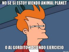 #RUTINA #EJERCICIO #DIETA #ADELGAZAR #FRASES #MOTIVACION #CHISTES #RISA #MEMES