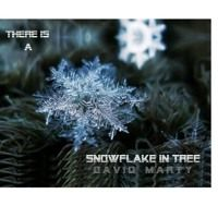 Snowflake In Tree by David Marty ShakePoint on SoundCloud
