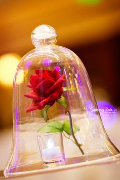 Suspended rose under glass!  Disney theme wedding fairy tale wedding - Wedding flowers and planning by Fascinare