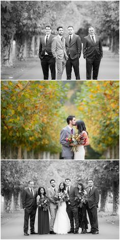 The beautiful Autumn wedding of Richard and Reeti, May 2016 - with thanks for Linda Baylis Photographer - Mission Estate Winery, Hawkes Bay