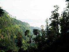 book | travel | food: Mengintip Rawa Pening dari Puncak Kalipancur