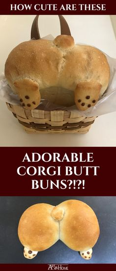 A Japanese bakery makes buns shaped like the adorable furball that is a Corgi butt. So if you love Corgis, you'll love these adorable Corgi Butt Buns. Japanese Bakery, Corgi Pictures, Cute Corgi, Pembroke Welsh Corgi, Corgis, Served Up, Little Dogs, Pet Portraits, Buns