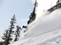 Southern Utah's Brian Head Resort gets 34 inches of new powder - http://www.slopesideliving.com/southern-utahs-brian-head-resort-gets-34-inches-of-new-powder/