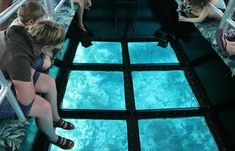 Key West Glass Bottom Boat Discount – Save 10% Today | Things to Do in Key West Florida
